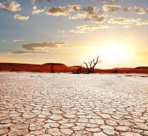 dry conditions