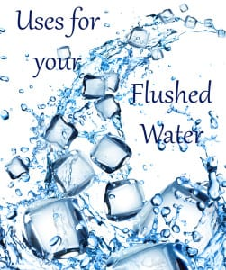 Uses for Your Flushed Water