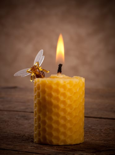 Lighted beeswax candles on wooden table