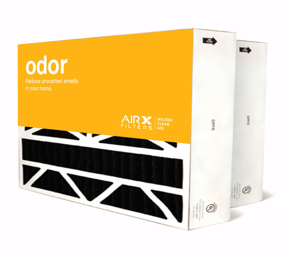 Original Aprilaire #401 Filter For 2400 Air Cleaner, 2-Pack