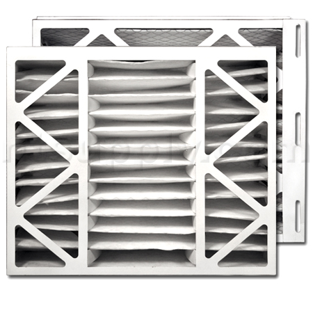 Trane/American Standard PERFECT FIT Air Filter (BAYFTDN17M)
