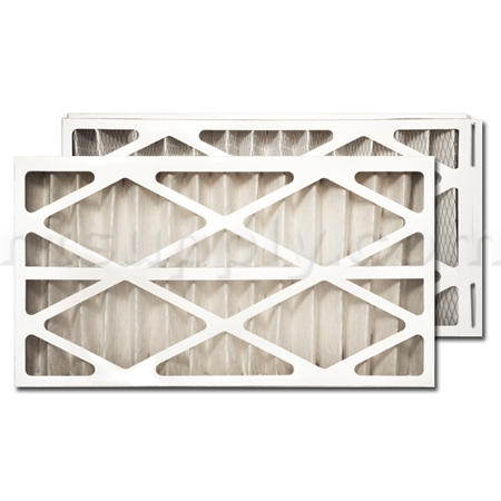 Trane/American Standard PERFECT FIT Air Filter (BAYFTFR14M)