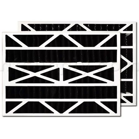 Bryant/Carrier FILXXCAR0020 Odor Control Replacement  Filter - 20 x 25 x 5, 2-Pack
