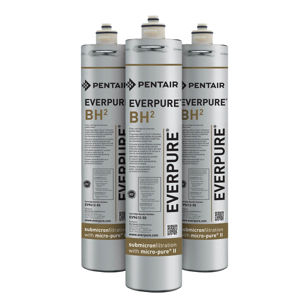 Everpure ev9612 50 commercial water filters for Everpure water filter review
