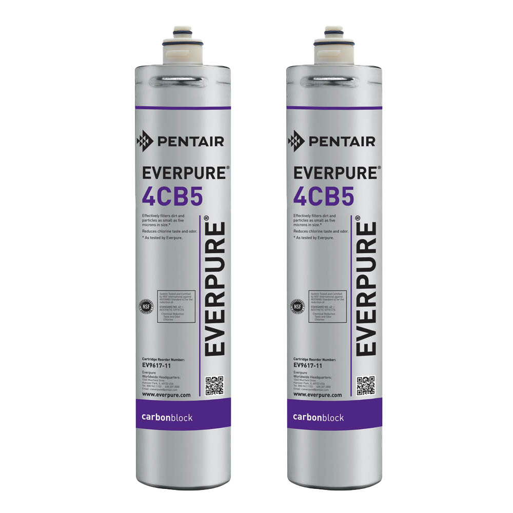 Everpure 4CB5 Water Filtration Cartridge