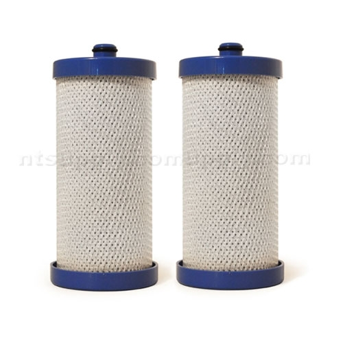 EcoAqua Replacement for Frigidaire Filter (RC200/WFCB, RG100/WF1CB), 2-Pack